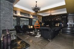 arpa-imobiliare-vila-lux-bucium-400mp-BGA13