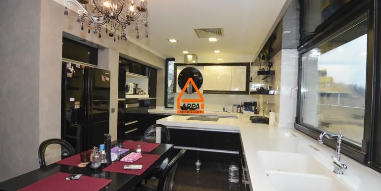 arpa-imobiliare-vila-lux-bucium-400mp-BGA16