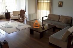 arpa-imobiliare-vila-casa-bucium-300mp-MS10