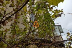 arpa-imobiliare-casa-apartament-centru-250mp-mt7