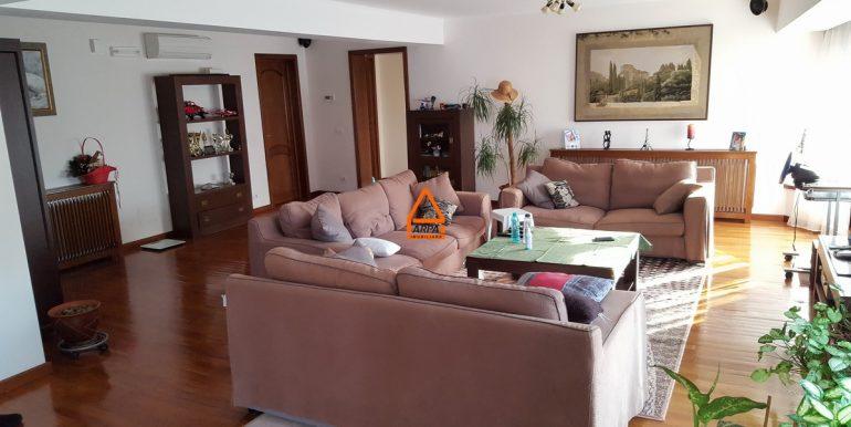 arpa-imobiliare-vila-bucium--330-mp -B.C.6
