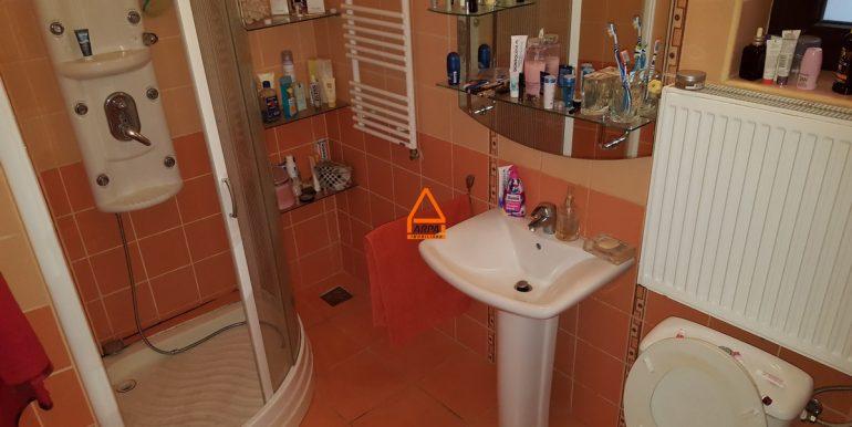 arpa-imobiliare-vila-spatiu-bucium-420-mp-ML3