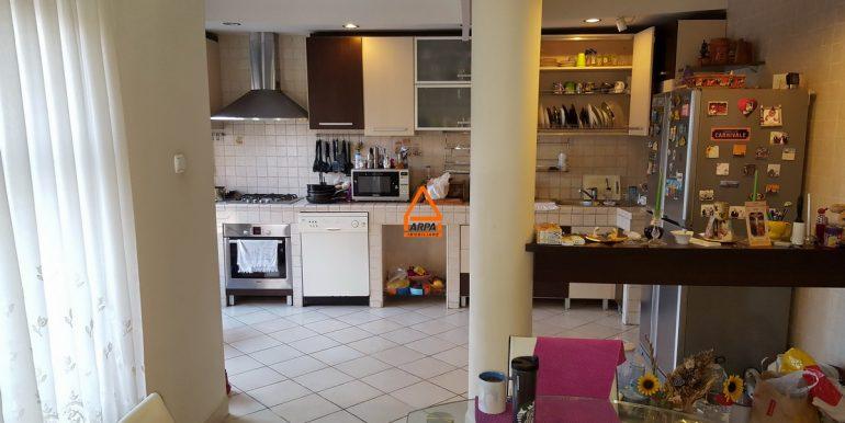 arpa-imobiliare-vila-spatiu-bucium-420-mp-ML4
