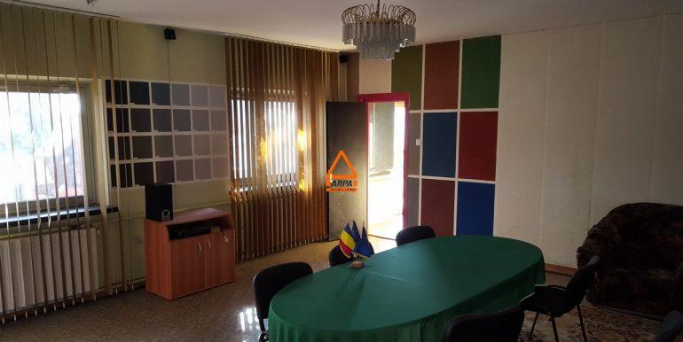 arpa-imobiliare-hala-birouri-700mp-Letcani-VC1
