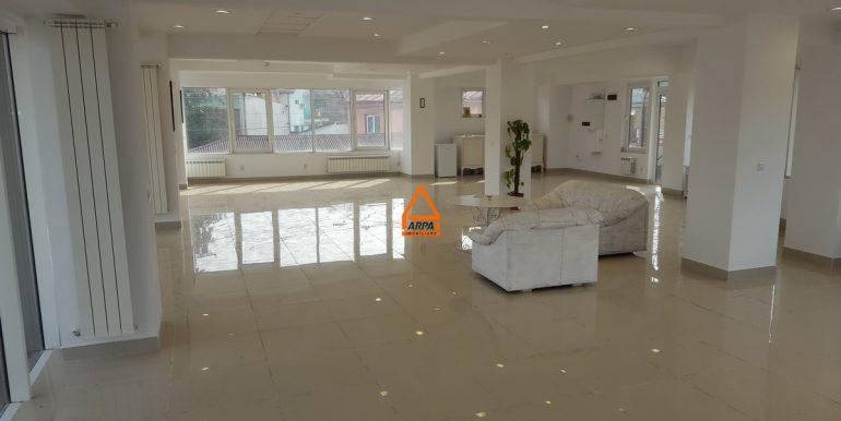 arpa-imobiliare-spatiu-150-mp-bucium-B 1A