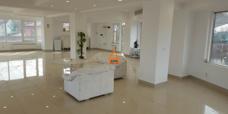 arpa-imobiliare-spatiu-150-mp-bucium-B 2A