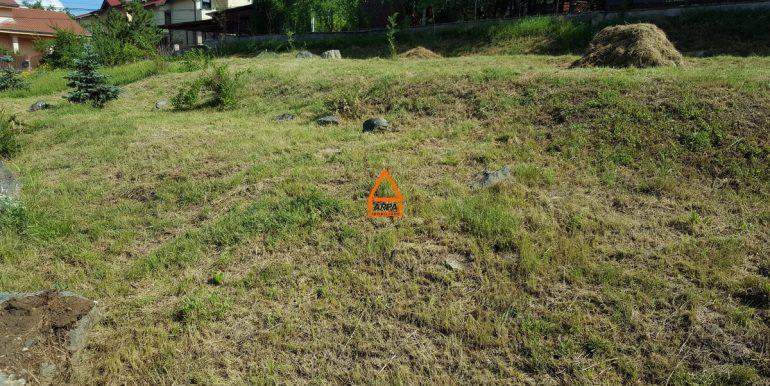 arpa-imobiliare-teren-intravilan-948-mp-iasi-bucium-ICB2