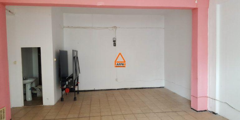 arpa-imobiliare-spatiu-galata-450mp-600mp-PP5