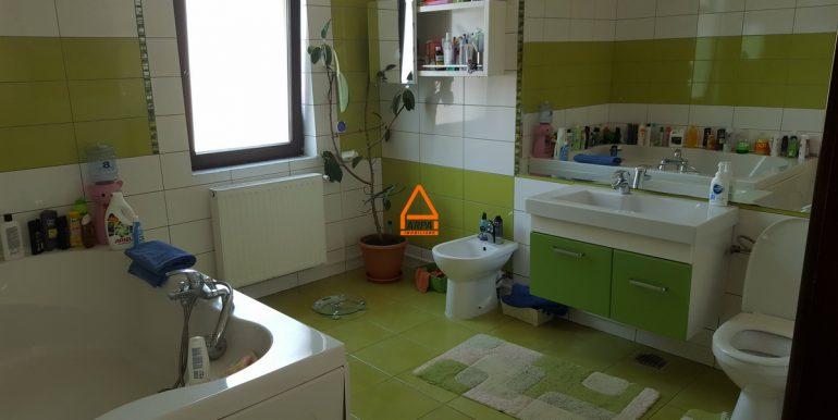 arpa-imobiliare-vila-bucium--250-mp -O.ICB5