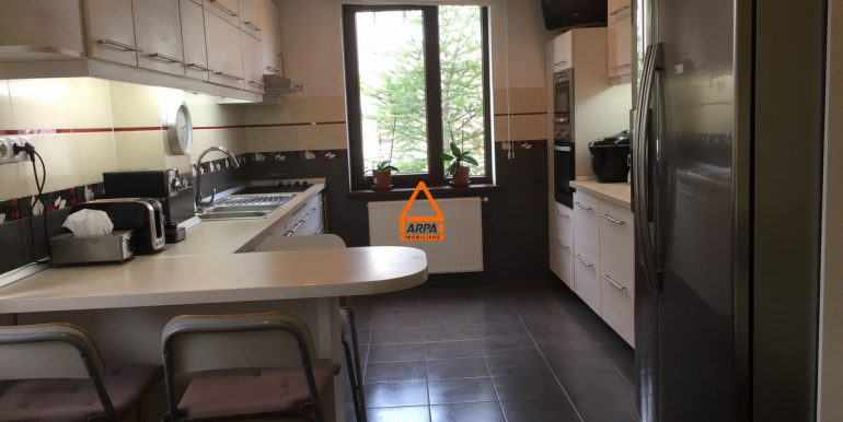 arpa-imobiliare-vila-bucium--290-mp -IB-AD10