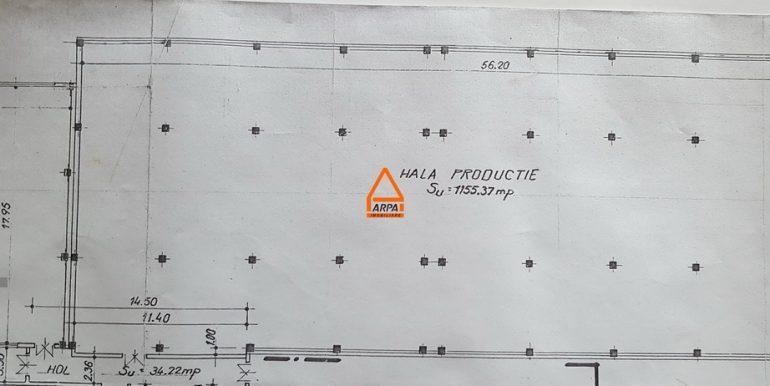 arpa-imobiliare-hala-1350mp-zona-industriala-ICMC6
