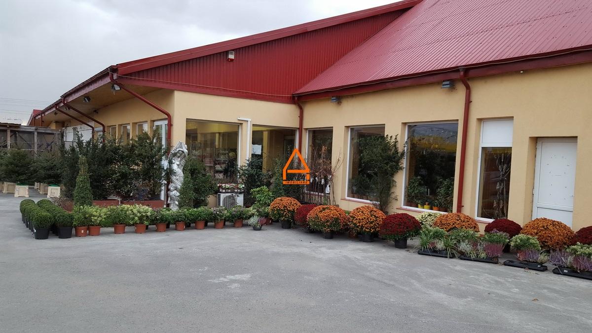 Spatiu / Hala / Apartament – 600 mp, teren – 1600 mp depozitare , productie – Pacurari ( DN – E58 )