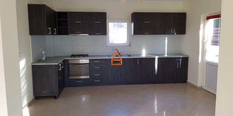 arpa-imobiliare-vila-casa-bucium-EP1