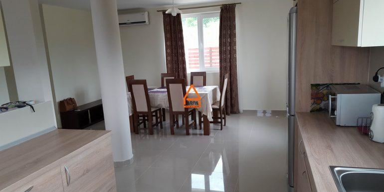 arpa-imobiliare-vila-casa-bucium-PNS3