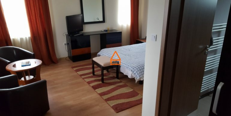 arpa-imobiliare-vila-casa-bucium-PNS8
