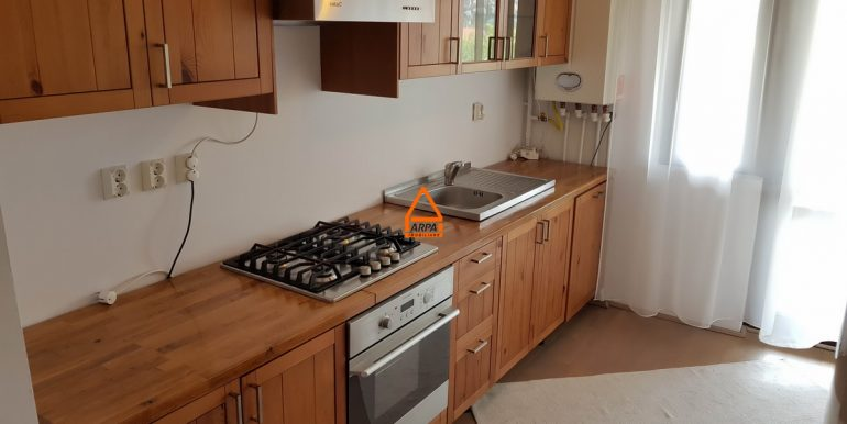 arpa-imobiliare-apartament-3cam-106mp-garaj-24mp-Bucium-CC8