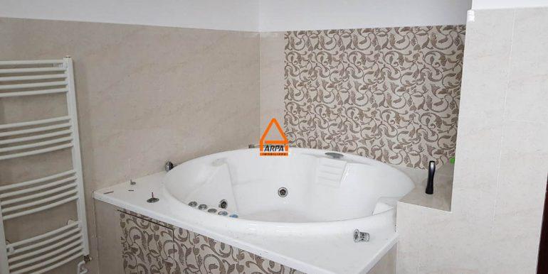 arpa-imobiliare-casa-vila-bucium-380-mp-RFICB14