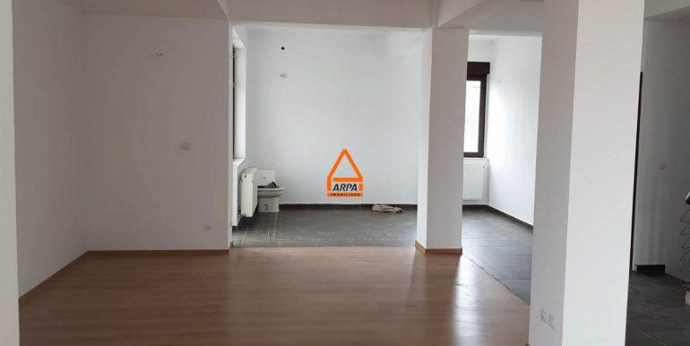arpa-imobiliare-casa-vila-bucium-380-mp-RFICB16