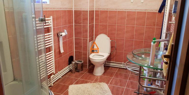 arpa-imobiliare-vila-casa-bucium--210-mp -SD9
