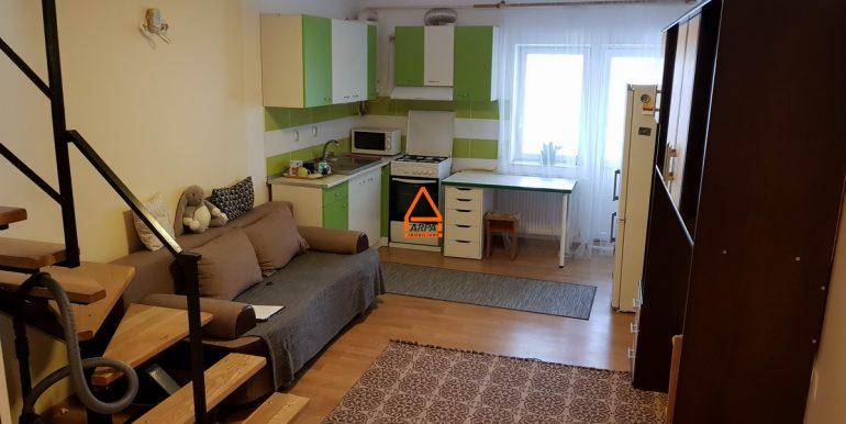 arpa-imobiliare-apartament-2cam-47mp-Alexandru-Minerva-DI4