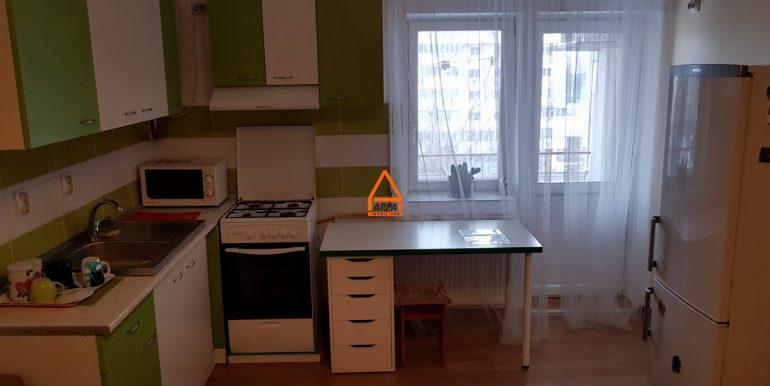 arpa-imobiliare-apartament-2cam-47mp-Alexandru-Minerva-DI6