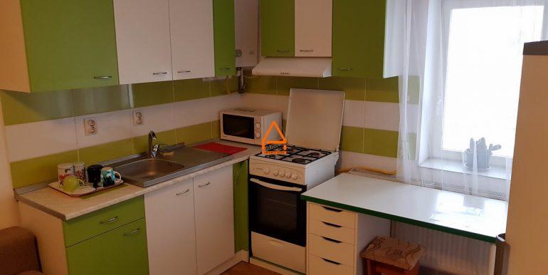 arpa-imobiliare-apartament-2cam-47mp-Alexandru-Minerva-DI7