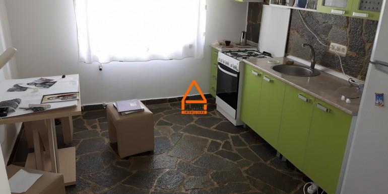 arpa- imobiliare-vila-bucium-PC-TB11