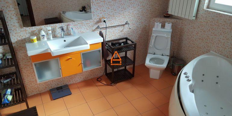 arpa-imobiliare-vila-bucium-300mp-US4