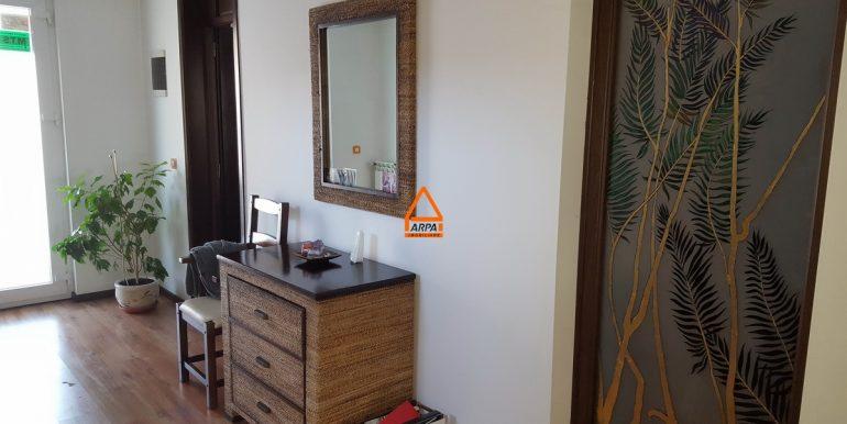 arpa-imobiliare-vila-bucium-300mp-US9