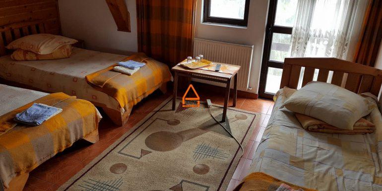 arpa-imobiliare-vila-pensiune-bucium-460-mp-VM4