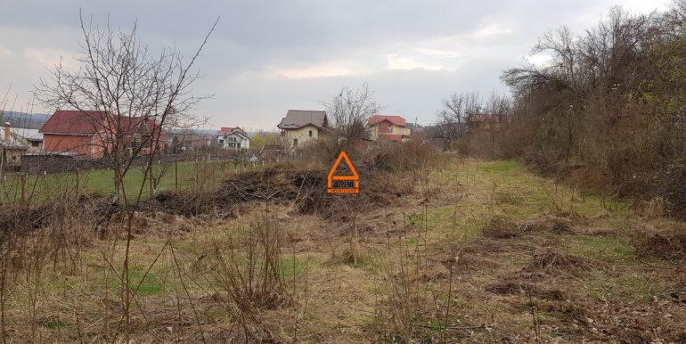 arpa-imobiliare--870mp-teren-barnova-FM3