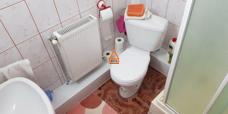 arpa-imobiliare-casa-vila-bucium-visani-310mp-SG10