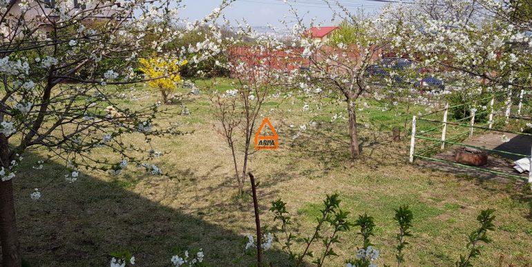 arpa-imobiliare-casa-vila-bucium-visani-310mp-SG2