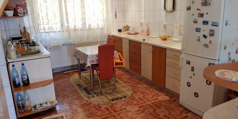 arpa-imobiliare-casa-vila-bucium-visani-310mp-SG6