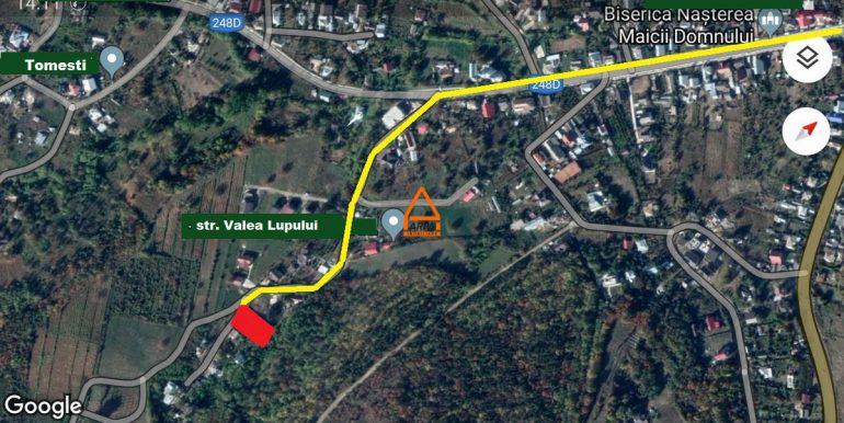 arpa-imobiliare-teren-intravilan-1000-mp-iasi-tomesti-DM7