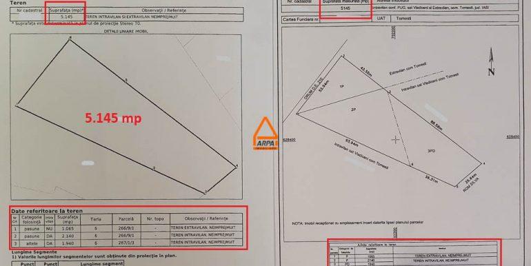 arpa-imobiliare-loturi-5145mp-15414mp-31400mp-teren-tomesti-IC2