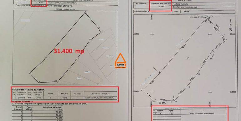 arpa-imobiliare-loturi-5145mp-15414mp-31400mp-teren-tomesti-IC4