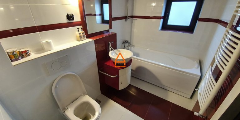 arpa-imobiliare-casa-vila-bucium-360-mp-BFR13