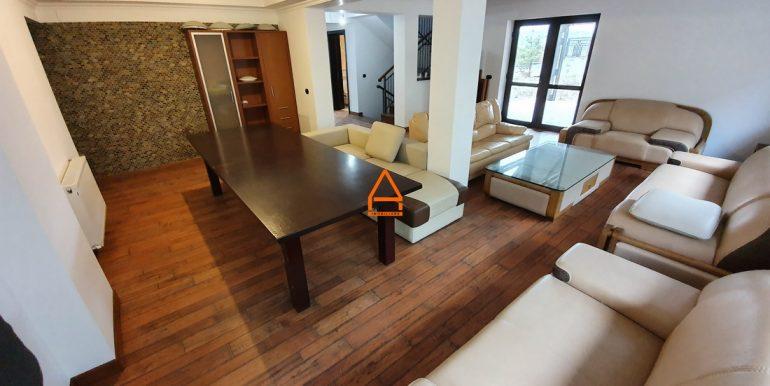 arpa-imobiliare-casa-vila-bucium-360-mp-BFR4