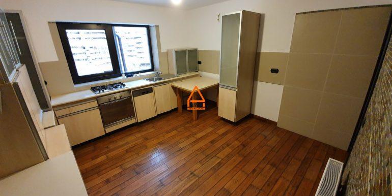 arpa-imobiliare-casa-vila-bucium-360-mp-BFR5