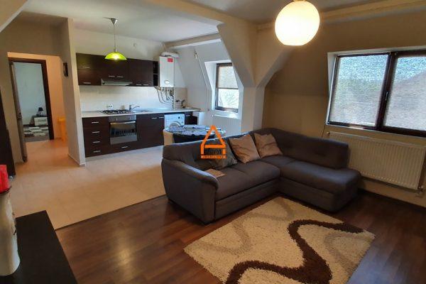 Apartament 2 cam. – 48 mp , Nicolina – Tudor Neculai